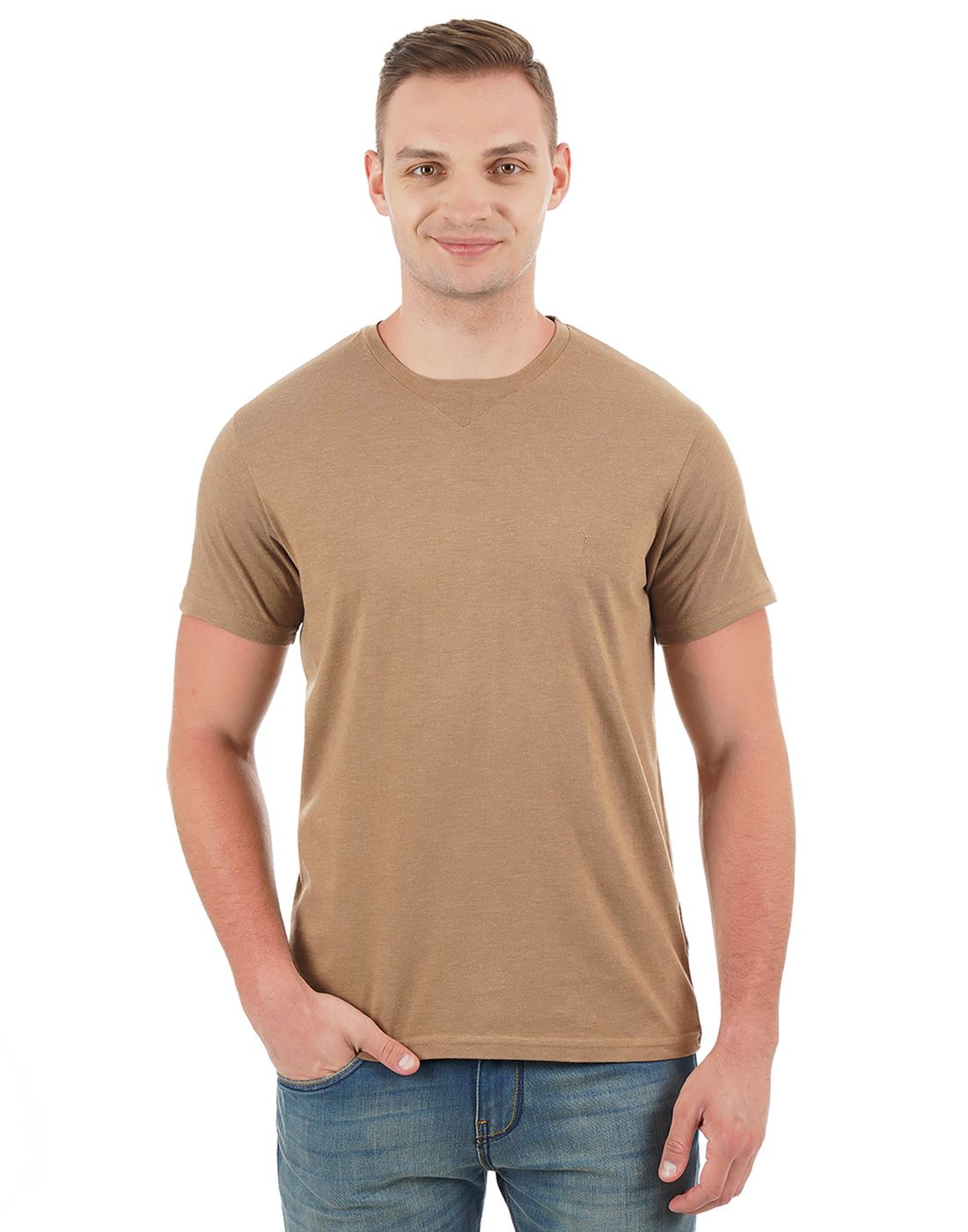 Indian Terrain Men Solid Casual Wear T-Shirt