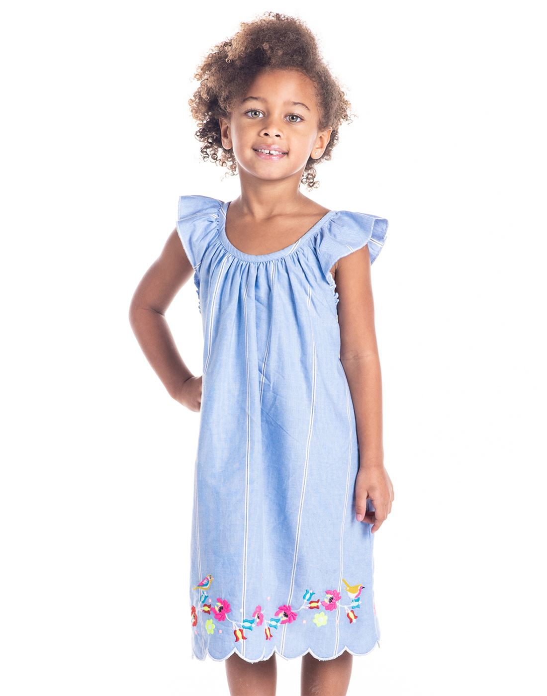 Cherry Crumble California Casual Wear Embroidered Girls Dresses