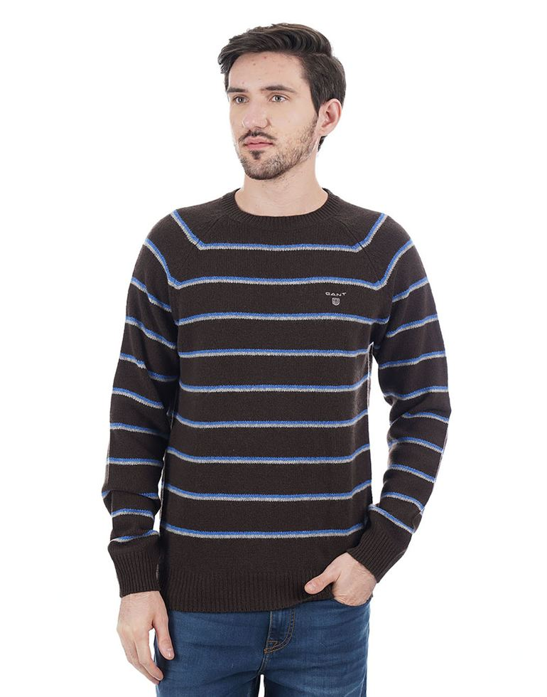 Gant Men Brown Pullover
