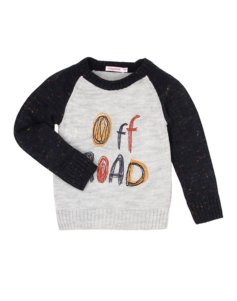 Wingsfield Casual Printed Boys Sweater