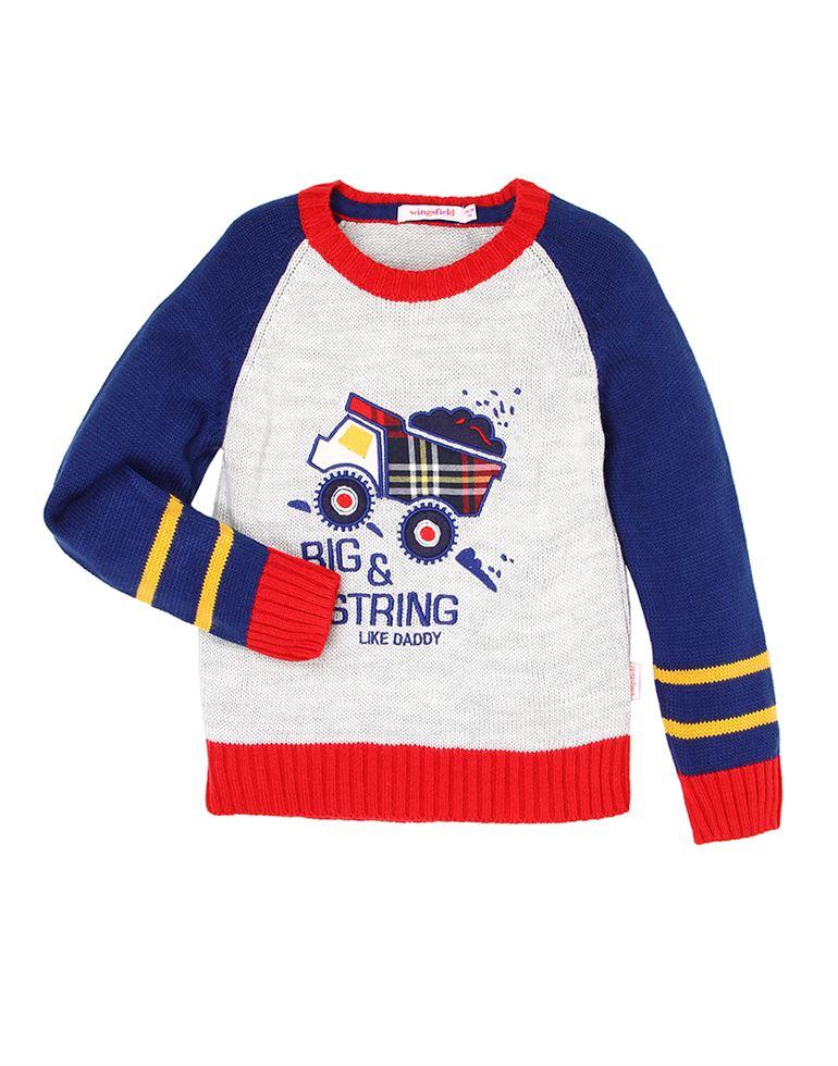 Wingsfield Blue Baby Boy Winter Wear Sweater